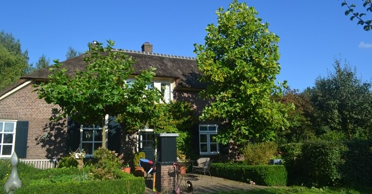 Molenkolk bed and breakfast opleiding sjamanistisch healer